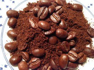 cafe 5 ec